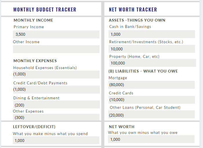 Budget and Networth 3